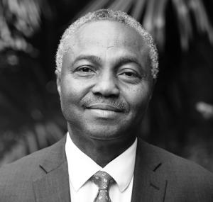 Professor Chuka Nwokolo